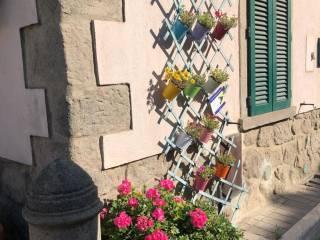Foto - Casa indipendente via della Posta 1, Castiglione d'Orcia