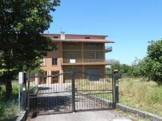 Foto - Appartamento buono stato, primo piano, Paternopoli