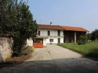 Photo - Dairy farm Strada Provinciale -Cardè, Moretta
