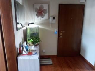 Photo - 3-room flat via Costantino Baroni 65, Gratosoglio, Milano