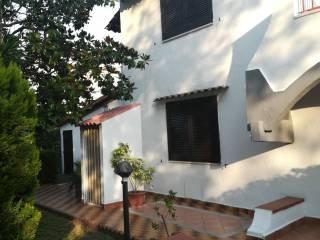 Photo - Terraced house viale degli Eucalipti, Cellole