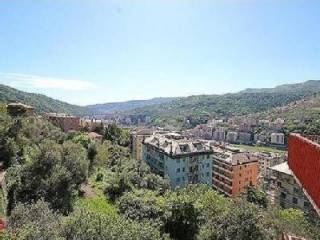 Photo - 4-room flat excellent condition, second floor, Molassana, Genova