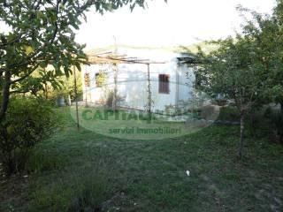 Foto - Terreno agricolo in Vendita a San Mango sul Calore