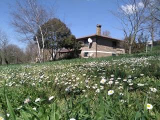 Foto - Villa unifamiliare, buono stato, 100 mq, Canale Monterano