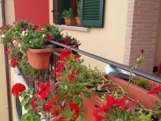 Photo - Terraced house via Campo Jemini, Pomezia