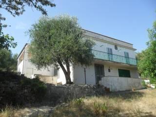 Photo - Multi-family villa Contrada Defensola, Vieste