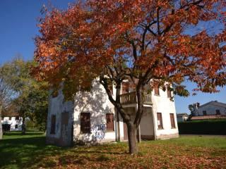Photo - Country house 200 sq.m., Zero Branco