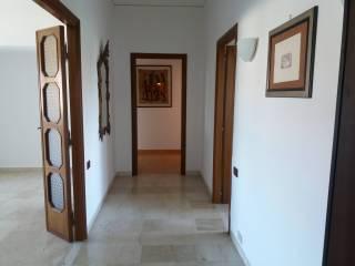 Foto - Appartamento via Zara, Santa Lucia - Paradiso, Viterbo