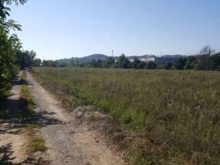 Terreno Vendita San Giovanni Valdarno