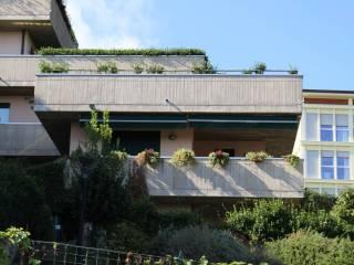 Photo - 3-room flat excellent condition, ground floor, San Fermo della Battaglia