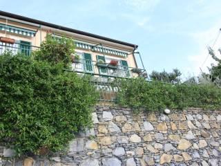 Photo - 3-room flat via delle Mimose, Avegno