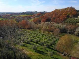 Foto - Villa unifamiliare via Piane, Poggio Catino