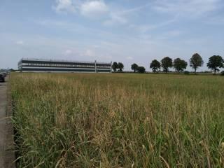 Foto - Terreno edificabile industriale a Roverbella
