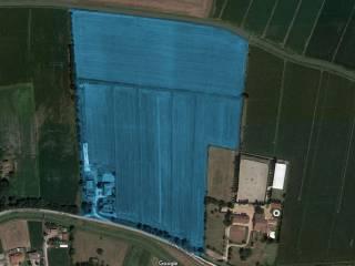 Photo - Agricultural land for Sale in Costa di Rovigo