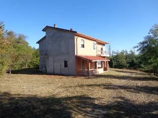 Foto - Casa colonica via del Borgo, Cavatore