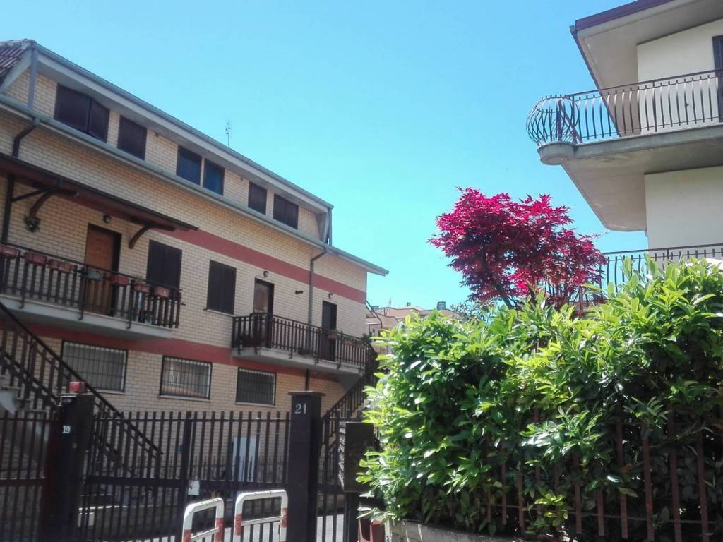 foto VISTA 3-room flat via Molise 19, Fonte Nuova