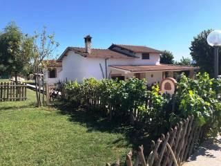 Photo - Single family villa Provinciale Caipoli, Gallicano nel Lazio