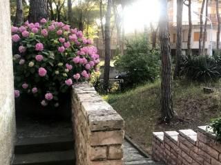 Foto - Villa unifamiliare, buono stato, 350 mq, Jesolo
