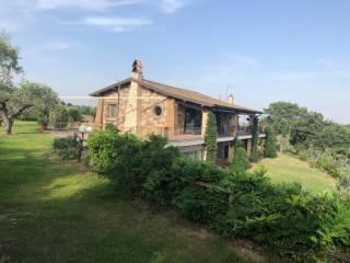 Photo - Farmhouse via Fonte della Tartaruga, Trevignano Romano