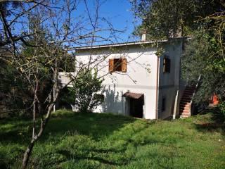 Photo - Single family villa via dei Boschetti, Torrita Tiberina