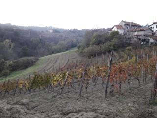 Photo - Country house via Belletti 6, Cremolino