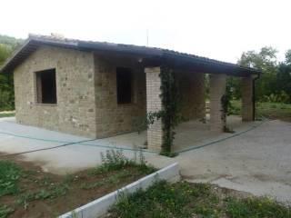 Foto - Villa unifamiliare, buono stato, 110 mq, Serrapetrona