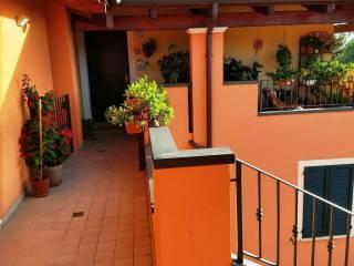 Photo - Penthouse via Flaminia, Colli al Metauro