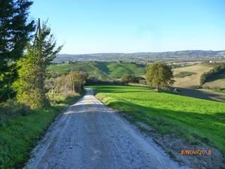 Photo - Farmhouse via San Filippo 22, Terre Roveresche