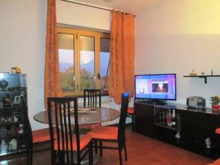 Photo - 3-room flat via Bernardino De Bustis, Sant'Edoardo, Busto Arsizio