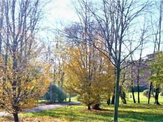Photo - 4-room flat via Lippi 100, Buon Pastore - Parco Amendola, Modena
