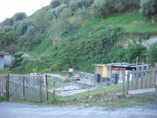 Foto - Terreno agricolo in Vendita a Guardialfiera
