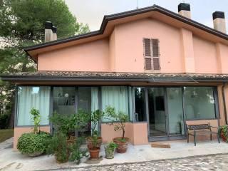 Photo - Appartement excellent état, rez-de-chaussée, Misano Adriatico