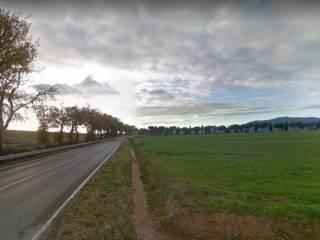 Foto - Rustico / Casale all'asta Località Squadre Basse, Grosseto