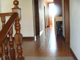 Foto - Villa unifamiliare, buono stato, 160 mq, Savignano sul Rubicone