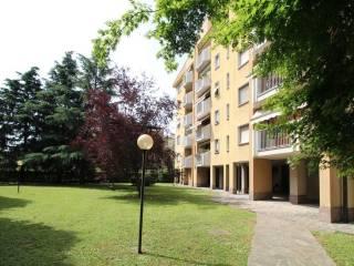 Фотография - Трехкомнатная квартира via Robecchi, Muggiò