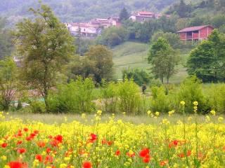 Foto - Villa unifamiliare, ottimo stato, 120 mq, Cicengo, Odalengo Grande