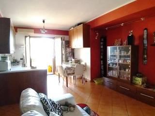 Photo - 2-room flat via delle Quinte, Monte Compatri