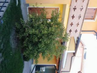 Photo - Terraced house via Giovanni Pascoli, Sustinente