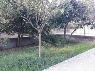 Foto - Appartamento via Igino Garbini, Villanova - Riello, Viterbo