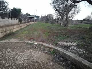 Foto - Terreno agricolo in Vendita a Matino