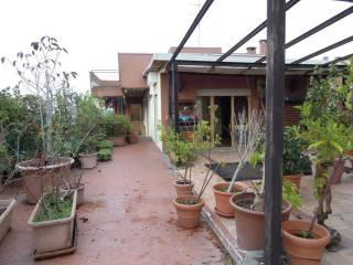 Photo - Penthouse via Abruzzi, Pieve Emanuele