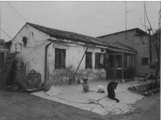 Foto - Rustico / casale all'asta via Stradelle, 41, Candiana
