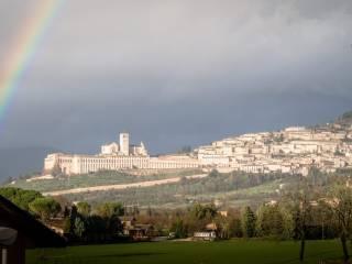 Foto - Mansarda via Giacomo degli Oddi, Santa Maria Degli Angeli, Assisi