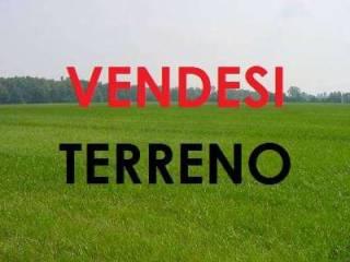 Foto - Terreno agricolo in Vendita a Carmagnola