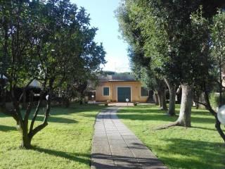 Foto - Villa unifamiliare viale delle Pratoline, Villaggio Giornalisti - Poggio, Anzio