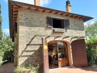 Foto - Casa colonica Case Sparse Aia, Radda in Chianti