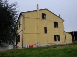 Φωτογραφία - Αγροικία via San Marco, Frazione Lucrezia, Cartoceto