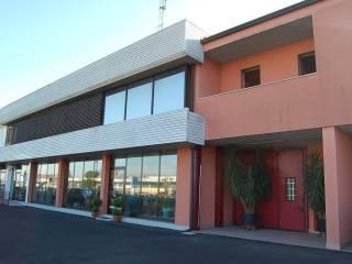 Immobile Affitto San Pietro in Gu
