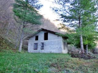 Foto - Casa colonica Contrada Versante Bosco, San Bartolomeo, Carpineto della Nora