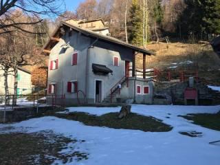 Foto - Baita Località Alpe Colle, Oggebbio